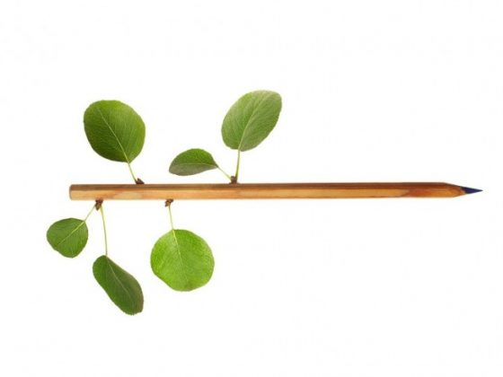 matita con foglie